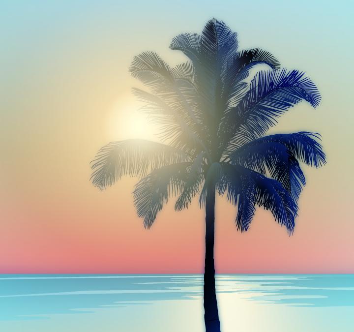 #10: Palms